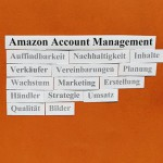 Amazon Vendor Central-Account Management: Pflege, Kontrolle, Erfolg.
