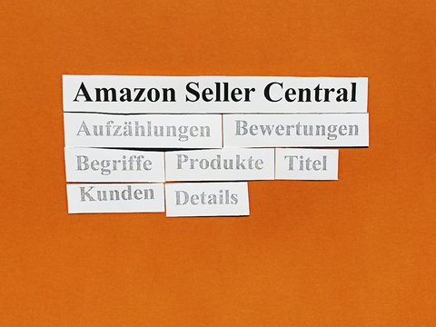 Amazon Seller Central: Produktlistungen.